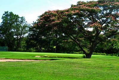 赤川市民ゴルフ場